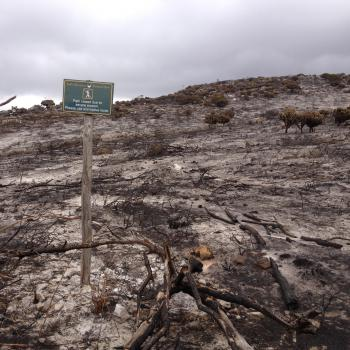 The Table Mountain fires in March has made our training much trickier